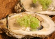 Oysters with Gin & Tonic Granite