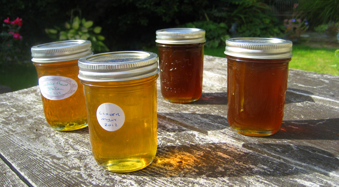 Canned Honey