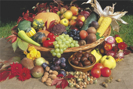 fruits, nuts and vegetables